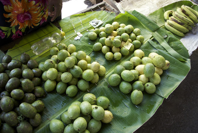Common Fruits In Papua New Guinea